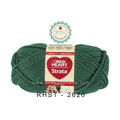 Red Heart Strata #2620 (Teal)